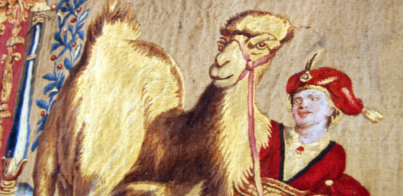 Articles_Tapestry_Camel