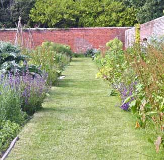 Firle Estate | Herb Garden in Sussex